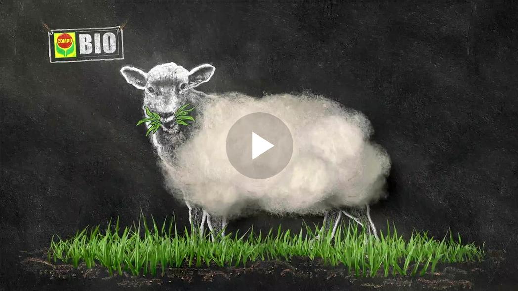 Ein TV-Spot des Texters Gregor Engel